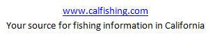 Mattlures ultimate bluegill for Bluegill fishing bait